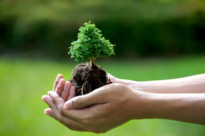 """Top 5 Ways to """"Green"""" Your Corporate Event"""